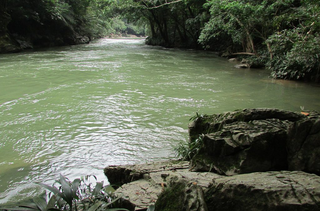 Custodia del Agua: Un legado para el Oriente Antioqueño