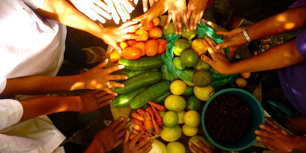Cooperativas, vitales para garantizar sistemas alimentarios sostenibles en las Américas